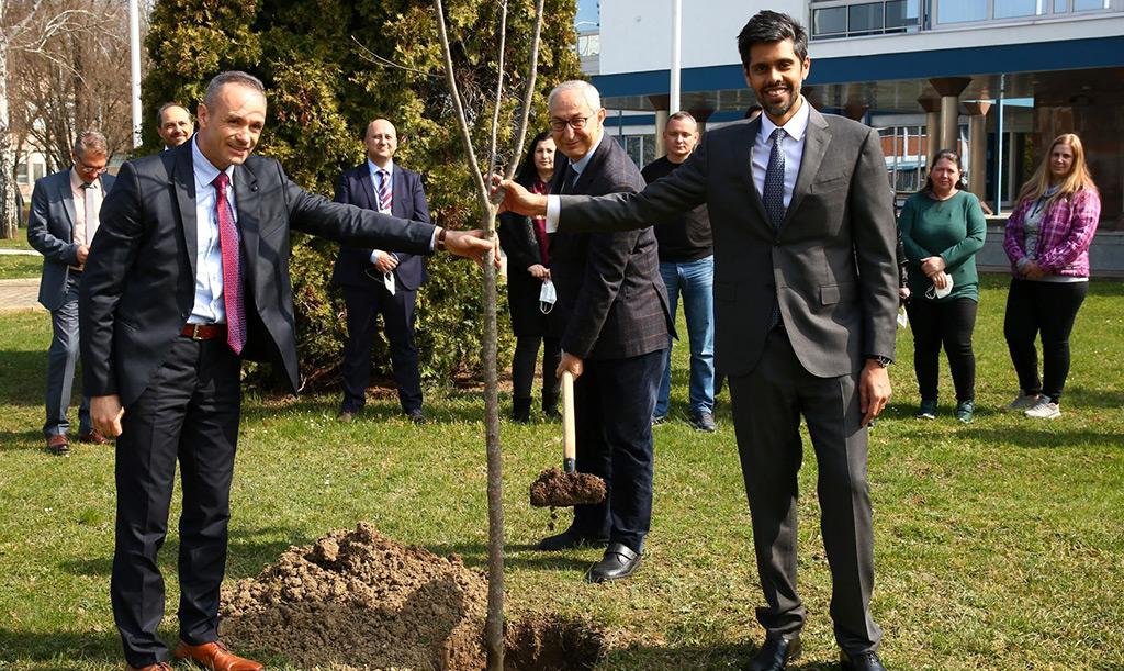 LS-stablo-za-Zdravlje_res-(2)